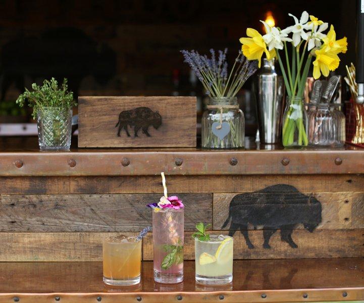 The Buffalo Mobile Bar